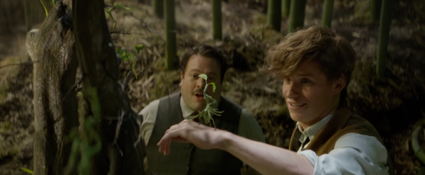 fantastic-beasts-and-where-to-find-them-trailer-movie-images-screencaps20