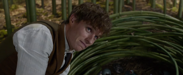 fantastic-beasts-and-where-to-find-them-trailer-movie-images-screencaps21