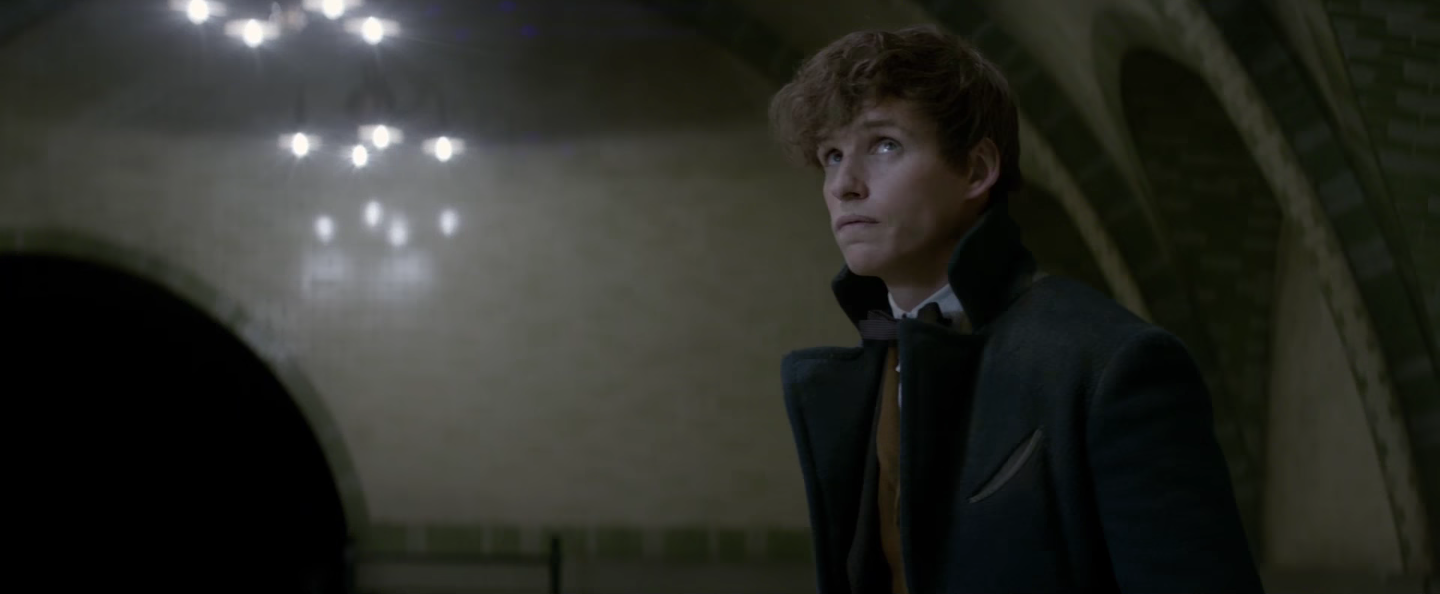 film 2016 fulllength fantastic beasts and where to find