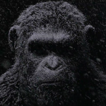 Teaser Trailer for Matt Reeves' 'War for the Planet of the Apes'