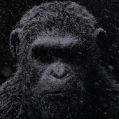 war-for-the-planet-of-the-apes-movie-trailer-official-image