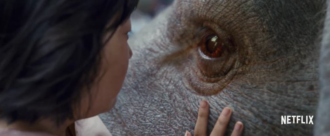 Bong Joon-ho Okja Movie Netflix