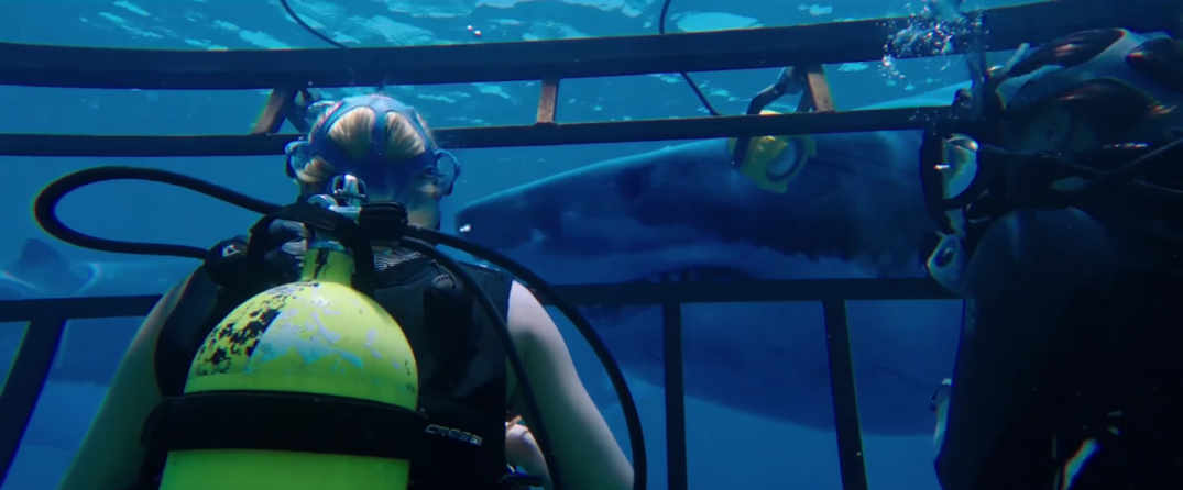 47 Meters Down Movie Trailer Screencaps Claire Holt Mandy Moore