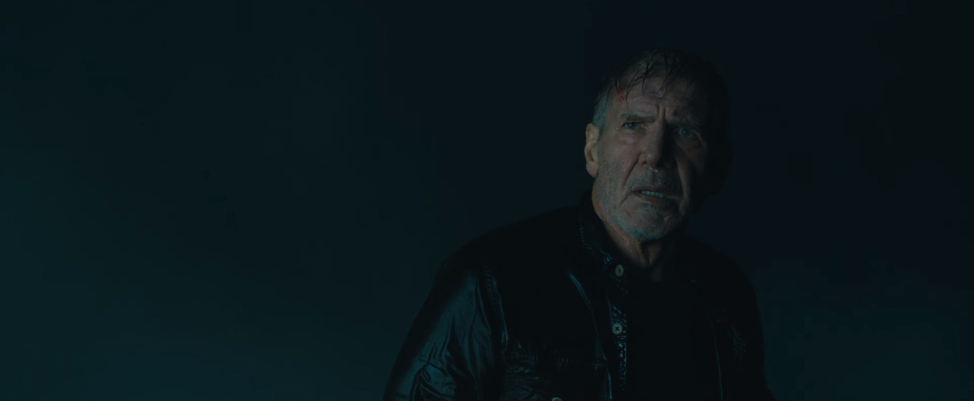 an analysis of blade runner a film starring harrison ford Harrison ford is back as rick deckard in blade runner 2049's trailer blade runner 2049's movie trailer has landed starring ryan gosling and harrison ford in the hotly-anticipated sci-fi sequel.